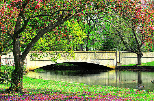Milford Duck Pond Bridge by Cathy Leite Photography