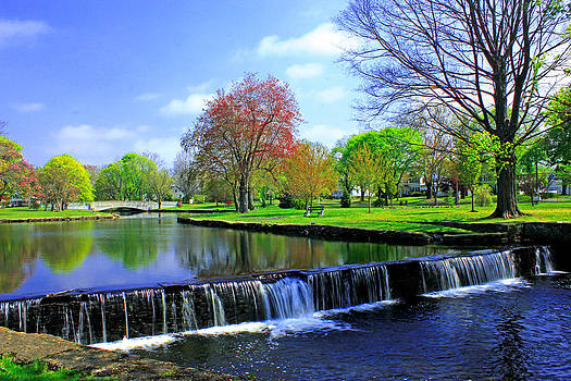 Milford Duck Pond in Spring by Cathy Leite Photography