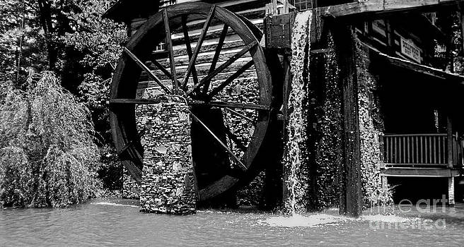 Mill by Timothy Fleming
