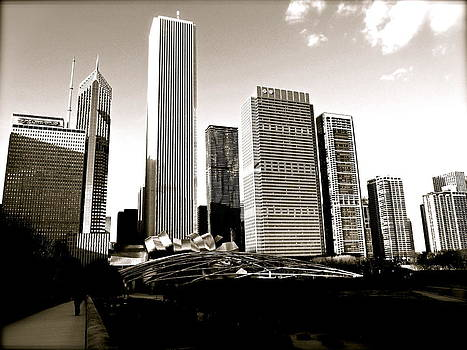 Millenium Park Skyscrapers by Stephanie Olsavsky