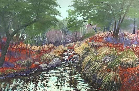 Miller Canyon Creek by Drusilla Montemayor