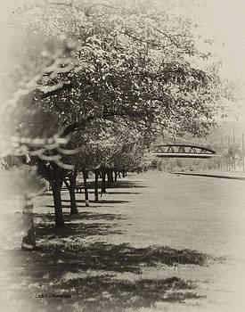 Miller Park by Maureen Cunningham