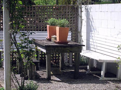 Rachael Shaw - Millstream Gardens 11