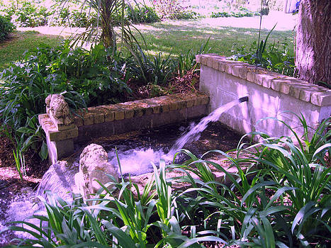 Rachael Shaw - Millstream Gardens 12