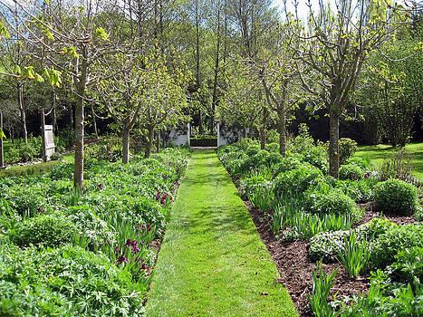 Rachael Shaw - Millstream Gardens 19