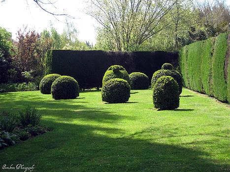 Rachael Shaw - Millstream Gardens 21