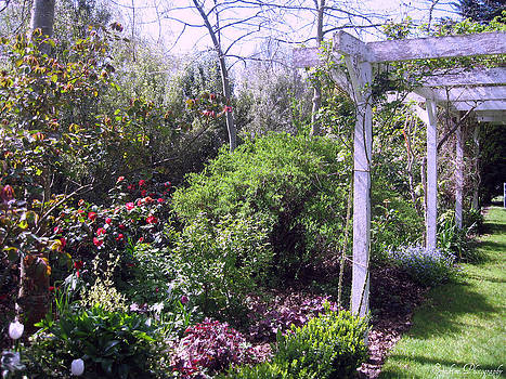 Rachael Shaw - Millstream Gardens 31