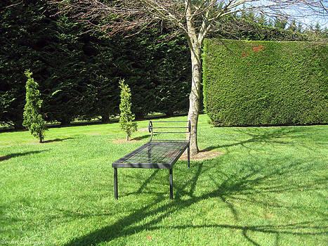 Rachael Shaw - Millstream Gardens 36