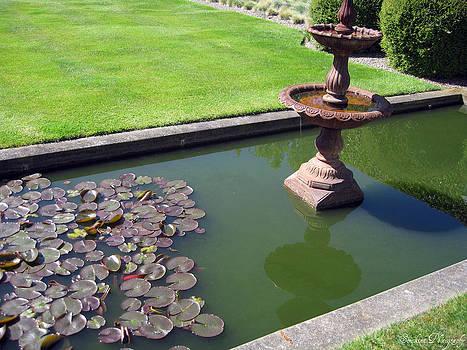 Rachael Shaw - Millstream Gardens 37