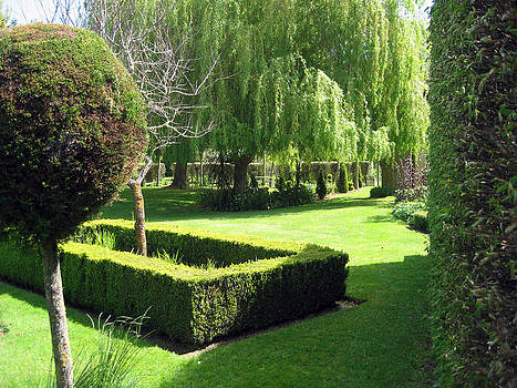 Rachael Shaw - Millstream Gardens 4