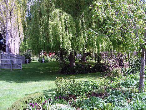 Rachael Shaw - Millstream Gardens 9