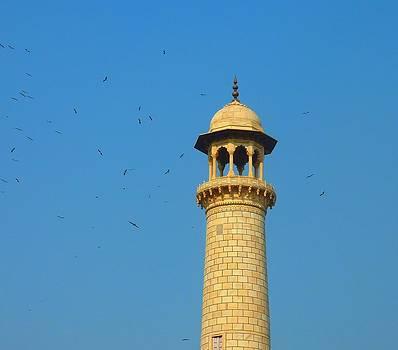 Minaret by Andrea Mendes