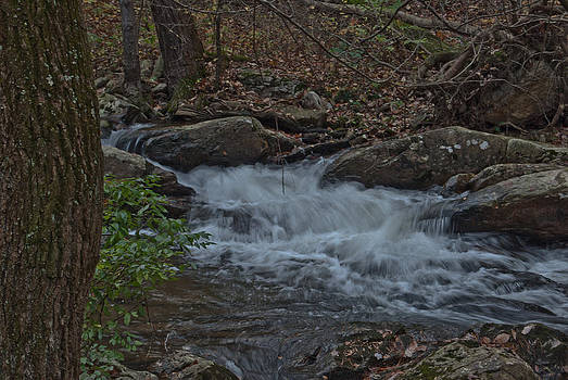 Mini Waterfalls in West Virginia by Donna Harding