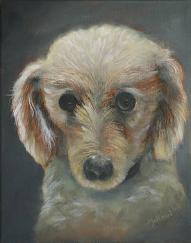 Miniature Poodle 1 by John Neal Mullican