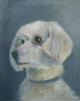 Miniature Poodle 2 by John Neal Mullican
