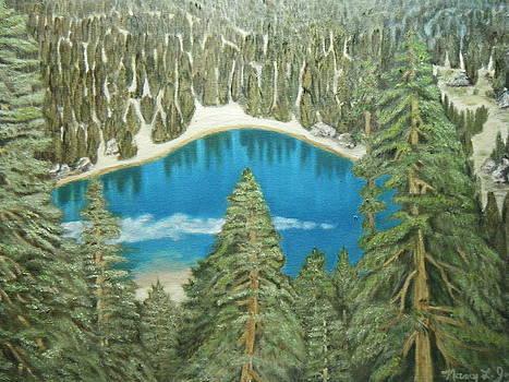 Mirror Lake by Nancy L Jolicoeur