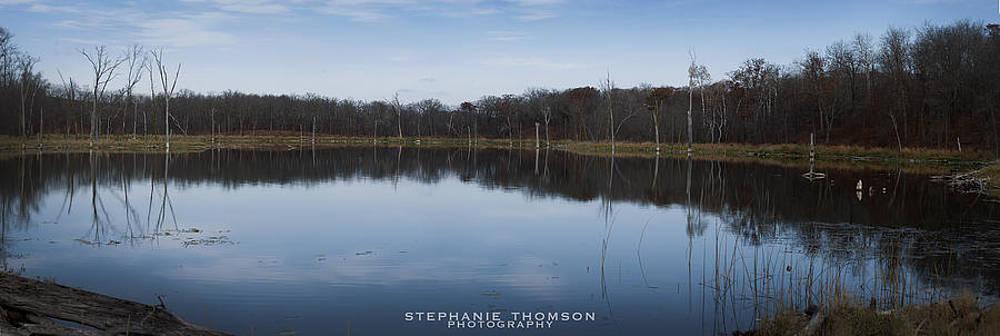 Mirrored by Stephanie Thomson