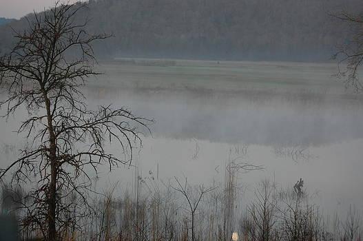 Mist 2 by Paul Thomley
