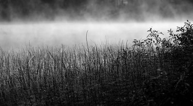 Mist by Mikhail Pankov