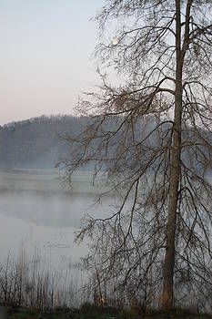 Mist by Paul Thomley