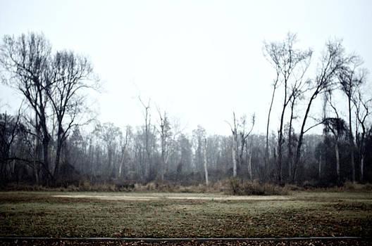 Misted Rain by Patrick Biestman