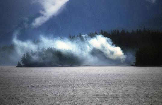Diana Cox - Misty Fjords