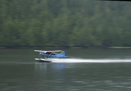 Diana Cox - Misty Fjords Floatplane