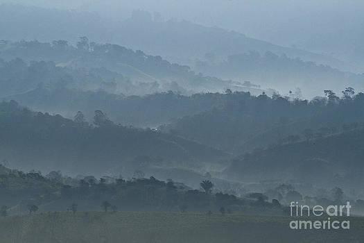 Heiko Koehrer-Wagner - Misty Hills of Chiriqui