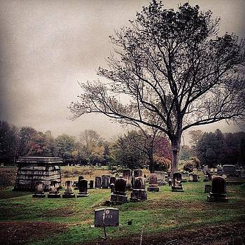 #misty by Megan Mcnutt