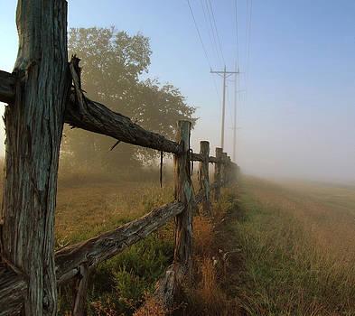 Misty Morning by Cindy Rubin