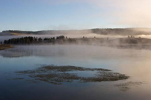 Misty morning by Johan Elzenga