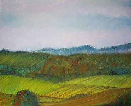 Misty Nappa Valley by Sharon Ford