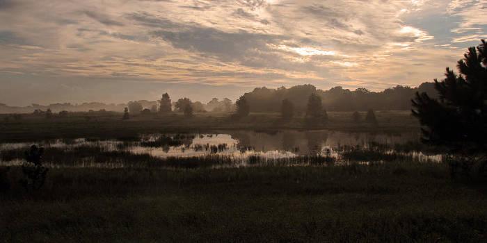 Peg Urban - Misty Pond