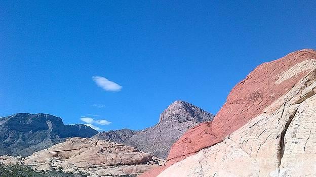 Mojave Desert by Nixon Mwangi