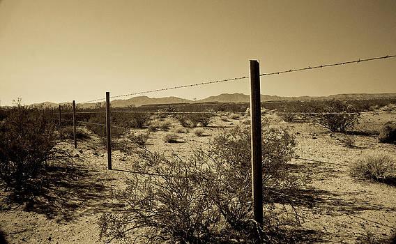 Gilbert Artiaga - The Mojave Desert