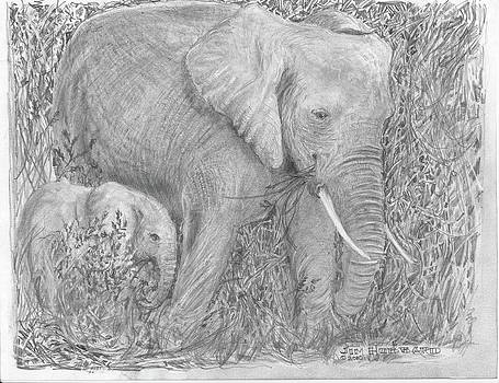 Jim Hubbard - Mom and her Baby