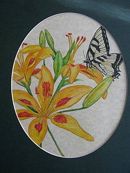 Monarch and Lilies by Fran Haas