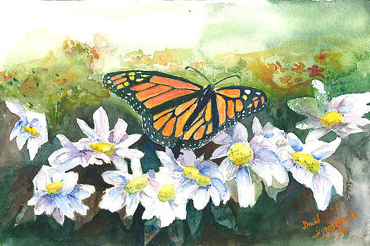 Monarch and Mums by David Ignaszewski