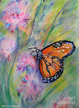 Monarch Butterfly by M c Sturman