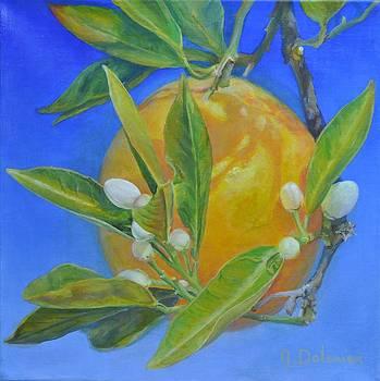 Monde Orange by Muriel Dolemieux
