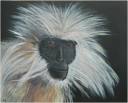 Monkey Wild by Kenneth McGarity