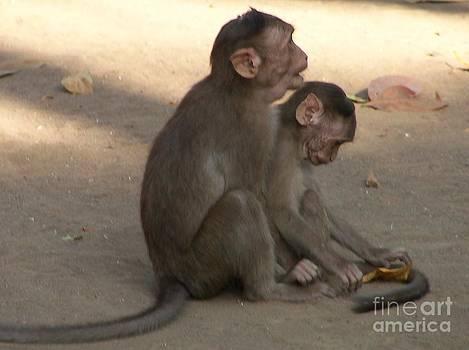 Monkeys - mother and child by Hemangi Koticha
