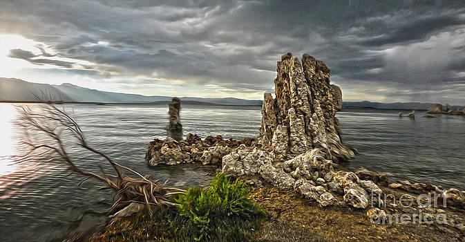 Gregory Dyer - Mono Lake - 04