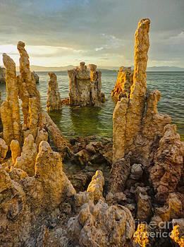 Gregory Dyer - Mono Lake - 12