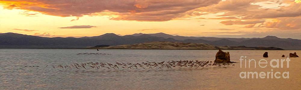 Gregory Dyer - Mono Lake - 14