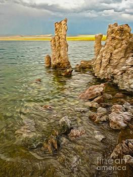 Gregory Dyer - Mono Lake - 15