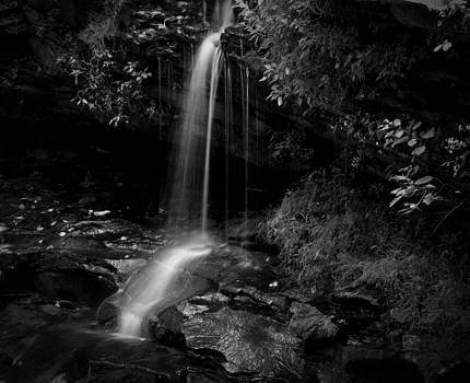 Monochrome Splash by Christine Annas