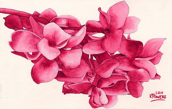 Ken Powers - Monotone Floral