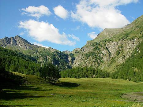 Montagne 2 by Niki Mastromonaco