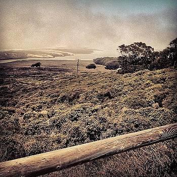 Montana De Oro - Los Osos, Ca by Veronica Rains